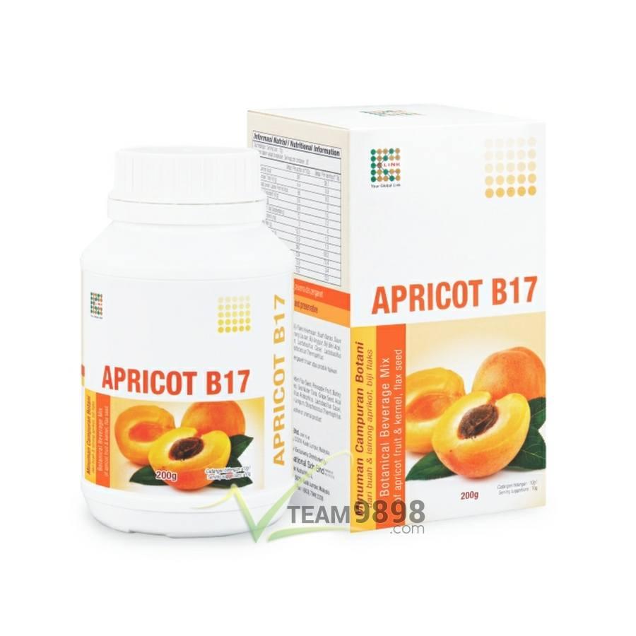 Apricot B17