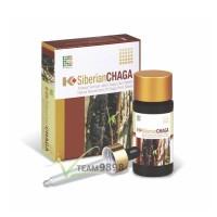 K-Siberian Chaga